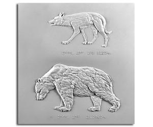 Il lupo e l'orso