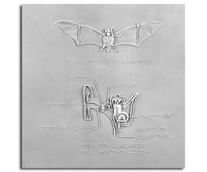 L'orecchio umano e il pipistrello